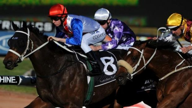 'The one I like': Chris Waller is keen on Coup Ay Tee.