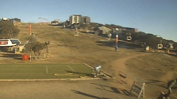 Mt Buller, via snow cam, June 18.