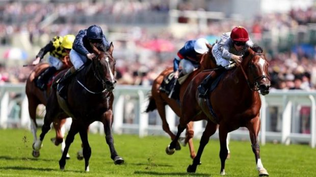 Royal company: Toronado (right) won the Queen Anne Stakes at Ascot on Tuesday.