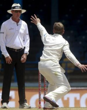 Kane Williamson unsuccessfully appeals to Australian umpire Rodney Tucker for an LBW decision.