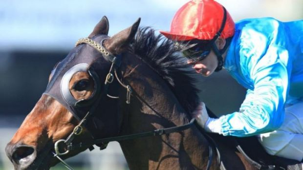 An inquiry will decide if Testarhythm should be disqualified from the Scone race.