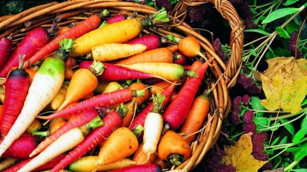 Study examines the benefits of a healthy diet: Fruit and vegetable consumption linked to delays in chronic illness.