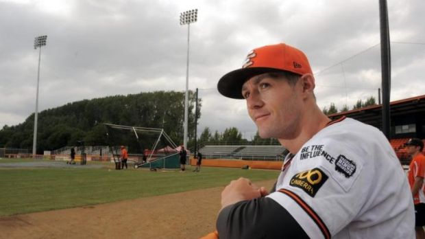 Michael Collins will manage Canberra Cavalry again in 2014-15.
