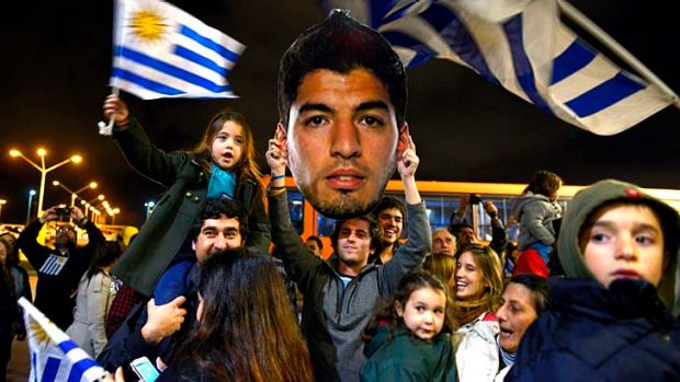 Hail to the tooth: A welcome party awaits Luis Suarez in Montevideo after he received a nine-match, four-month ban for ...