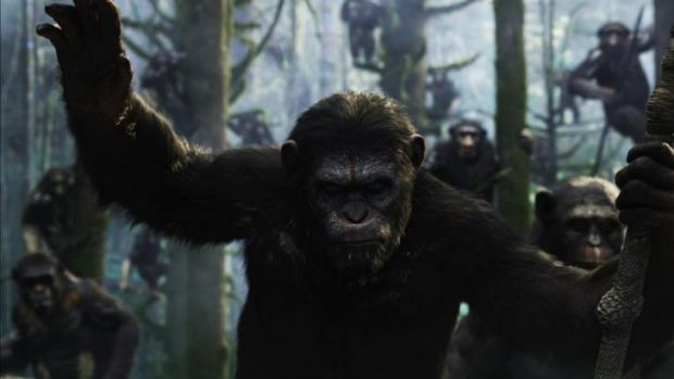 Latest release: <i>Dawn of the Planet of the Apes</i> opens this week.