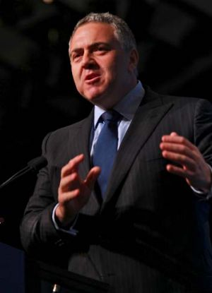 """Labor has cosmetic solutions and we need real solutions"": Treasurer Joe Hockey."