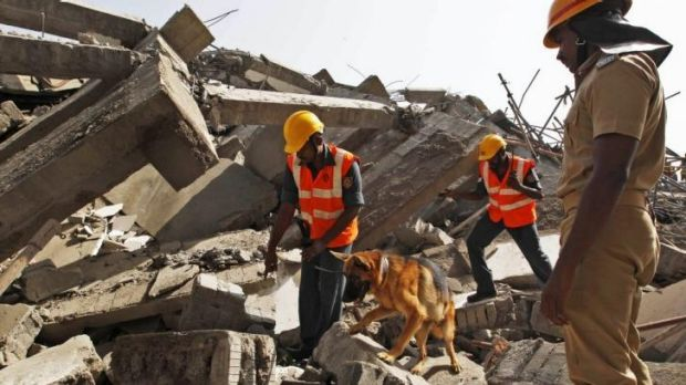 Rescuers with a sniffer dog search for workers believed buried in the rubble of a building that collapsed late on ...