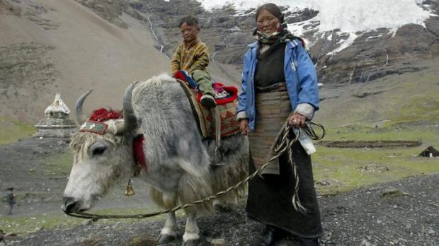 A Tibetan woman and her child posing with their yak in front of the Karuola mountain, south-west of Lhasa. A gene ...