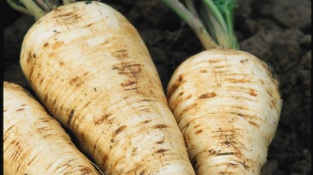 Perfect pairing: Parsnips are wonderful slowly roasted with lamb or a chook.