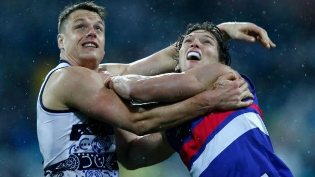 Hamish McIntosh of the Cats and Will Minson of the Bulldogs compete in the ruck.