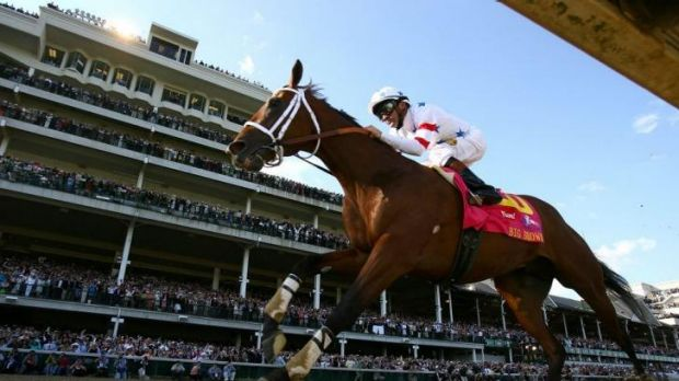 Good pedigree: Russet's sire Big Brown takes the Kentucky Derby six years ago.