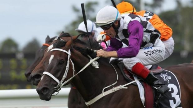 What's in a name: Danleigh won the 2011 Chipping Norton Stakes.