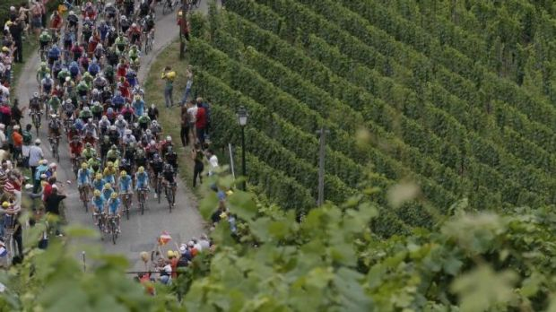 The Tour de France peloton weaves through the vines during the 170-kilometre ninth stage between Gerardmer and Mulhouse ...