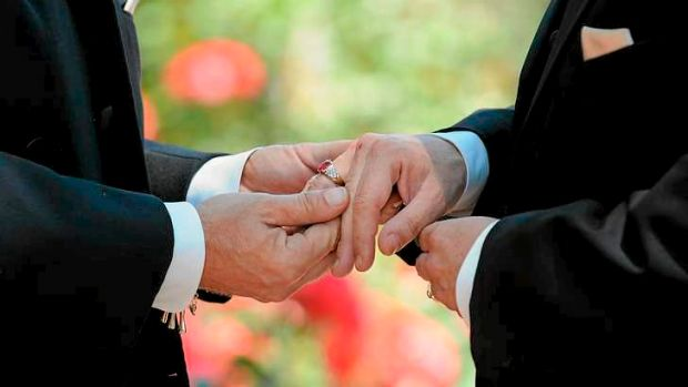 Liberal Party polling found that 72 per cent want same-sex marriage legalised, while 77 per cent think Coalition MPs ...