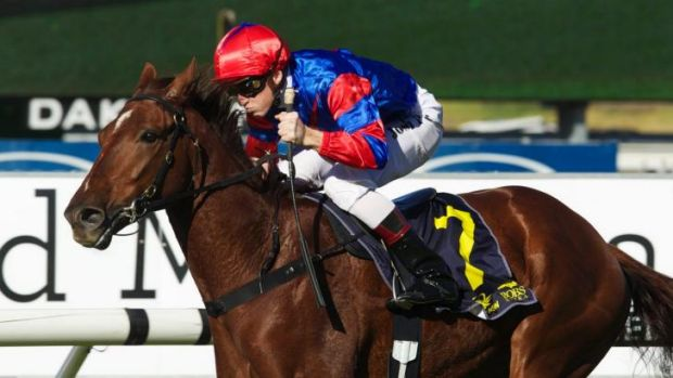 Shot at the title: James McDonald has set his sights on the Sydney jockeys title.