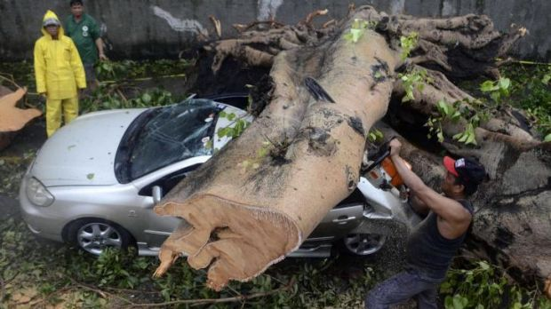 A worker uses an electric saw to remove a huge tree that fell on top of a car during the storm.