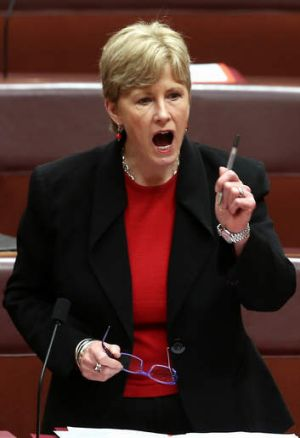 """""""This is a critical moment for our nation"""": Greens leader senator Christine Milne."""