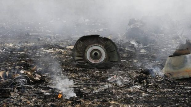The site of a Malaysia Airlines Boeing 777 plane crash is seen near the settlement of Grabovo in the Donetsk region, ...