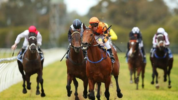 Uplifting: Liberation and Tim Clark dictated from the front to win at Rosehill.