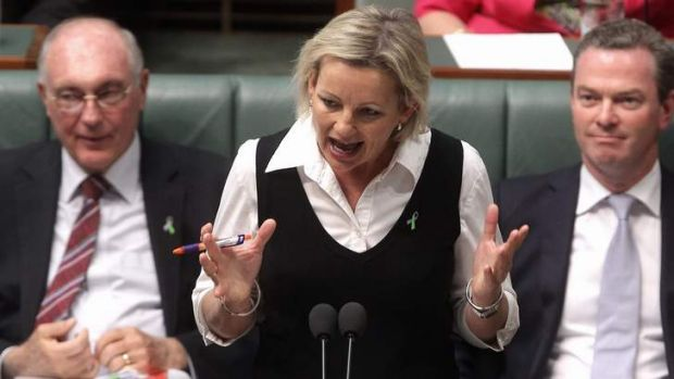 Assistant Education Minister Sussan Ley has dismissed some of the Productivity Commission's findings, including a ...