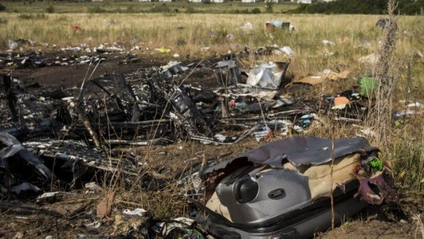 Luggage and wreckage from Malaysia Airlines flight MH17 lie in a field.