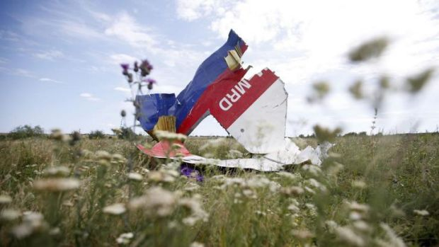 Part of the wreckage of  MH17 at the crash site.