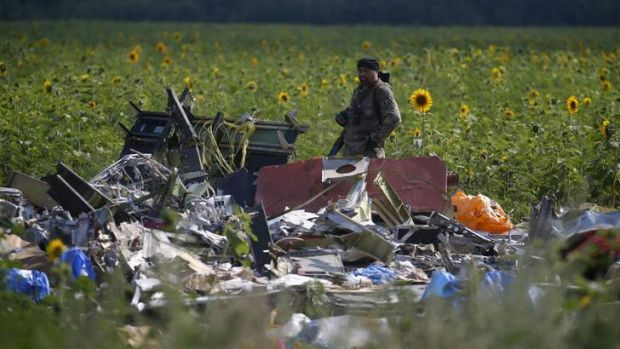 An armed pro-Russian separatist stands guard over the wreckage of MH17.