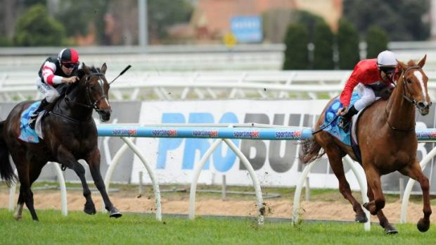 Out of nowhere: Thiamandi (right) takes the group three Bletchingly Stakes.