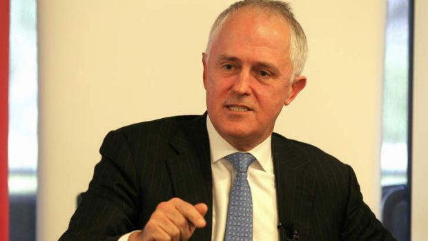 Communications Minister Malcolm Turnbull says film and music companies should foot the bill for a crackdown on online piracy.