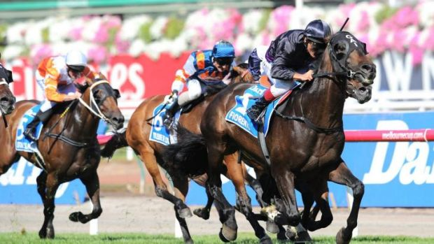 Finally: Fiorente, with Damien Oliver in the saddle, gives Gai Waterhouse her first Melbourne Cup winner in November.