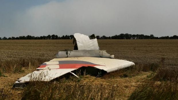 A portion of the MH17 wing lies in a field.