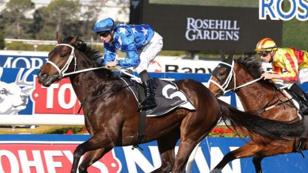 He's the one: James McDonald pilots He's Your Man to victory in the Winter Challenge.  Trainer Chris Waller prepared the ...
