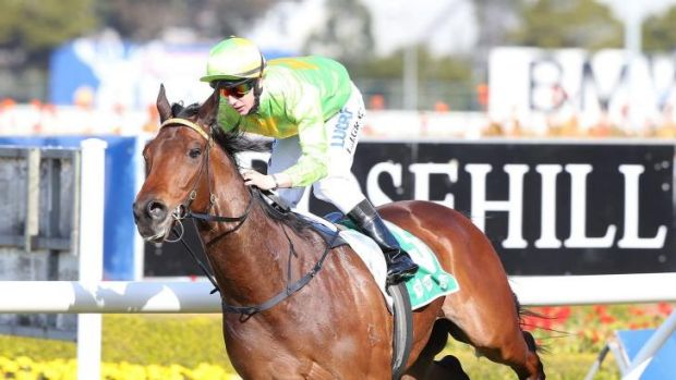 In chrage: Lester Grace and Oakfield Commands were able to put a smile on Gerald Ryan's face at Rosehill on Saturday.