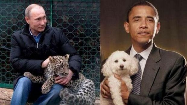 Animal logic: Russia Deputy PM Rogozin tweeted an image of Vladimir Putin with a leopard and Barack Obama with a poodle.