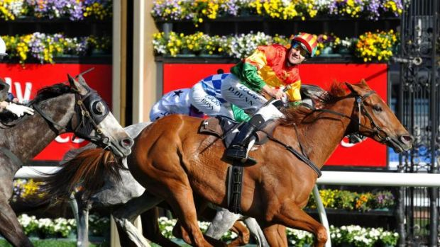 Happy days: Trainer Paul Beshara is looking to the future rather than dwelling on the past with Happy Trails.