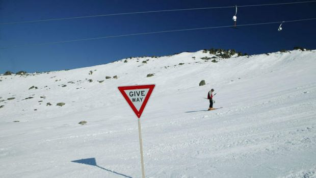 "Tow the line: These slopes, says operator Kosciuzko Thredbo, are now a ""complete branded entity""."