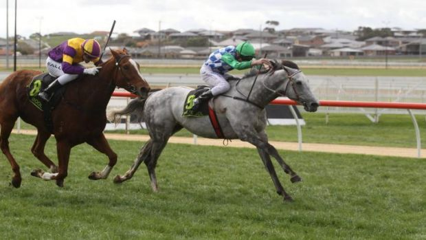 Brad Rawiller rides Puissance De Lune to victory in the Fresha Fruit Juices Handicap in Warrnambool in May 2012.