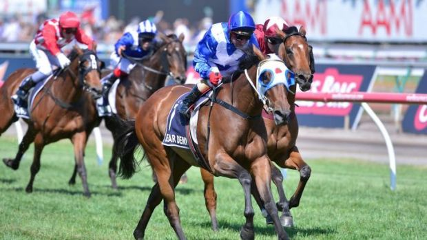 High hopes: Dear Demi will target the Caulfield Cup in the spring.
