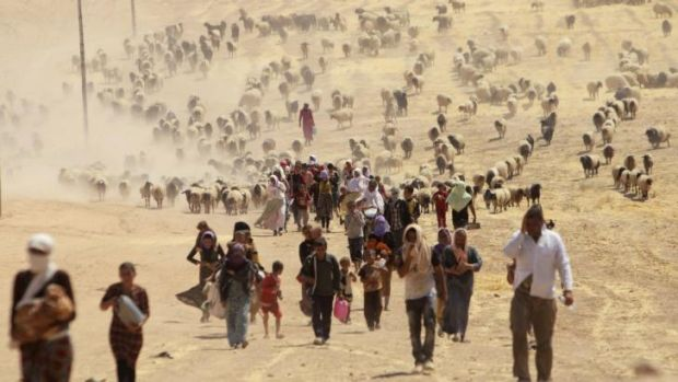 Fleeing for their lives: Yazidis try to get away from the violence of the Islamic State.