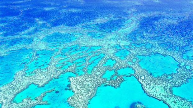 Hardy Reef, Great Barrier Reef.