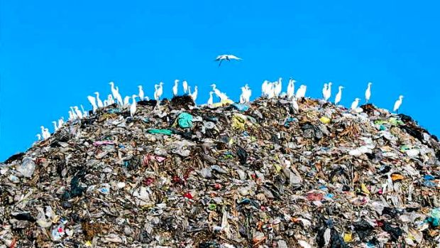 What if today's rubbish became tomorrow's new products?