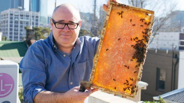 Doug Purdie with  bees at his home