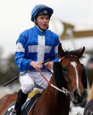 Winning ride: James McDonald returns to scale on Nostradamus.
