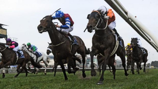 Stephen Baster and Star Rolling (right) take out the Lawrence Stakes at Caulfield on Saturday.