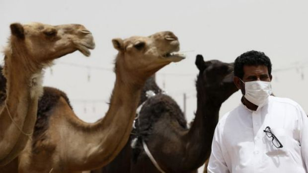 Is camel milk set to be the next big thing?