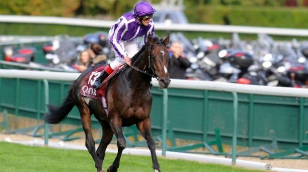 What's in a name: Coolmore's latest acquisition, Camelot.