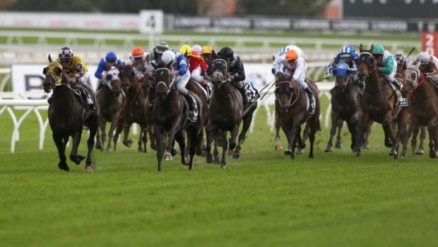 Four to the floor: Sacred Falls leads home Chris Waller's Doncaster foursome in April.