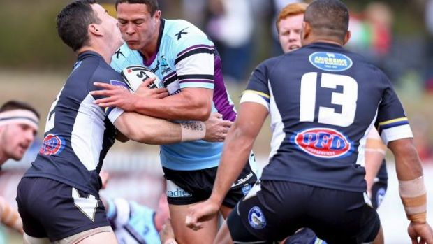 Fresh look: Scott Sorensen is in contention to make his NRL debut for the Sharks on Sunday.