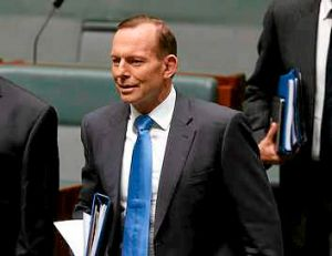 Another promise to go?: Tony Abbott's hand-picked review panel recommends the renewable energy target be dramatically ...
