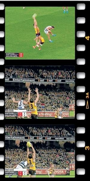 Hawthorn fans weren't impressed by the awarding of the free kick to Bartel.